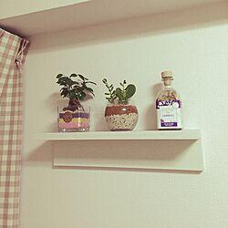 棚/観葉植物/無印良品 壁に付けられる家具/2K/狭い...などのインテリア実例 - 2016-12-14 22:30:35