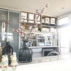 桜の切り枝/ブレッドケース/リノベーション/キッチン背面/IKEAの花瓶...などのインテリア実例 - 2019-04-09 07:54:46