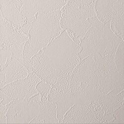 壁/天井/メインクロス/引渡し/記録用/リリカラ...などのインテリア実例 - 2016-12-22 21:37:04
