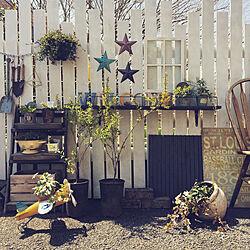 植物のある暮らし/庭のある暮らし/ベランダガーデン/ガーデニング/ガーデン雑貨...などのインテリア実例 - 2019-04-07 12:28:49