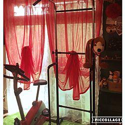 リビング/カーテン/トレーニング機器/IKEA/わんこと暮らす家のインテリア実例 - 2016-08-05 13:56:46