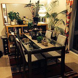部屋全体/ガラステーブル/ダブルデイ/アンティーク/観葉植物...などのインテリア実例 - 2015-05-18 23:23:32