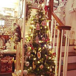 リビング/クリスマスツリー/階段の手すり/階段手すり/階段...などのインテリア実例 - 2014-11-25 16:48:56