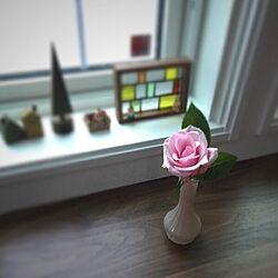 リビング/ダイソー/花/薔薇/花のある暮らし...などのインテリア実例 - 2017-01-15 09:58:23