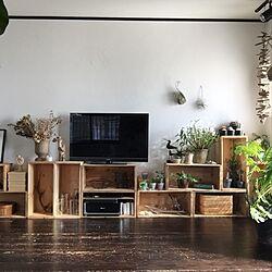 リビング/植物のある暮らし/りんご箱/TV/無垢の床...などのインテリア実例 - 2016-02-26 12:39:44