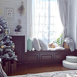 リビング/クリスマス/ペットと暮らす家/チワワ/クリスマスツリーのインテリア実例 - 2017-11-10 13:48:01