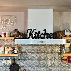 タイル貼り/レンジフード/キッチン/猫のいる風景/猫のいる暮らし...などのインテリア実例 - 2019-07-16 21:59:30