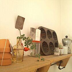 キッチン/プチハッピー/アンティーク/古いもの/室内グリーンのインテリア実例 - 2013-11-09 14:18:28