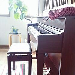 楽器/ニトリ/フェイクグリーン/電子ピアノのインテリア実例 - 2015-10-30 20:42:49
