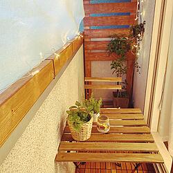 DIY/観葉植物/IKEA/カフェ風/多肉植物...などのインテリア実例 - 2020-05-11 12:59:10