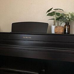 ピアノ/部屋全体/フェイクグリーン/ヤマハ電子ピアノ/シンプルのインテリア実例 - 2021-09-20 19:55:15