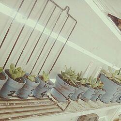 棚/雑貨/リメイク/RC東海支部/りえさんち...などのインテリア実例 - 2015-06-14 15:23:10