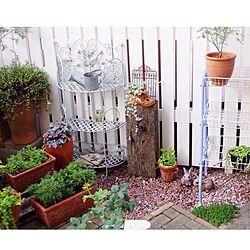 玄関/入り口/DIY/DIY庭/DIY立水栓/DIYフェンス...などのインテリア実例 - 2014-07-15 08:20:25