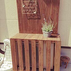 玄関/入り口/DIY/手作り/ハンドメイド/植物のインテリア実例 - 2014-06-02 21:14:30