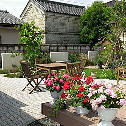 庭/ガーデン/ガーデニング/パリの石畳に憧れてのインテリア実例 - 2021-06-09 20:16:30