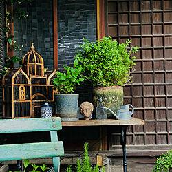 ガーデン雑貨/アラブ雑貨/はなのある暮らし/ガーデンテーブル&チェア/プロヴァンス...などのインテリア実例 - 2021-05-27 20:34:37