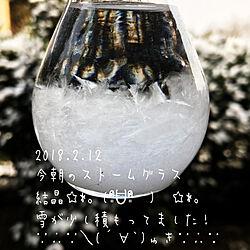 机/北側の庭/ストームグラス越しの雪の庭/うっすら雪が積もってます❄/雪...などのインテリア実例 - 2018-02-12 09:37:15