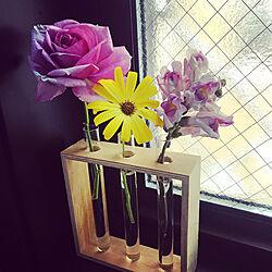 薔薇/花瓶はダイソー/花/100均/ダイソー...などのインテリア実例 - 2020-06-04 23:12:16