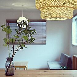 リビング/IKEA/青山フラワーマーケット/花器/照明...などのインテリア実例 - 2020-06-05 20:57:22