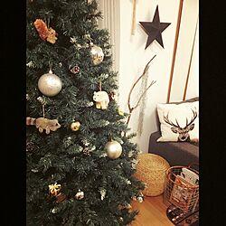 ニトリ/鹿さん/クリスマスツリーのオーナメント/クリスマスツリー/ニトリのクッションカバー...などのインテリア実例 - 2015-11-05 19:11:04