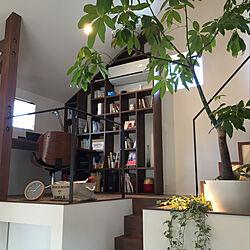 壁/天井/観葉植物/男の隠れ家のインテリア実例 - 2018-03-09 22:26:46