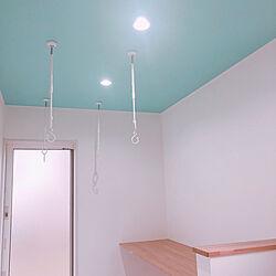 ティファニーブルー/サンルーム/壁/天井のインテリア実例 - 2020-07-12 20:02:28