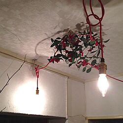 玄関/入り口/裸電球/フェイクグリーンぐるぐる巻き/カラーコード/クリスマスのイメージで...などのインテリア実例 - 2013-12-22 19:59:47