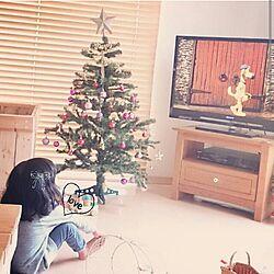 リビング/テレビ周り/クリスマスツリー/Daiso/DAISO&セリア&雑貨...などのインテリア実例 - 2015-11-26 23:46:28
