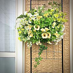 庭/花のある暮らし/ベランダガーデニング/ベランダガーデン/賃貸...などのインテリア実例 - 2021-05-19 13:33:05