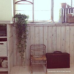 部屋全体/シュガーバイン/植物/手作り棚/手作り板壁...などのインテリア実例 - 2013-06-03 14:00:43