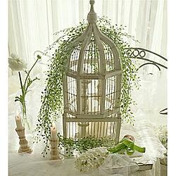 棚/植物のある暮らし/植物のある空間/キャンドルスタンド/LEDキャンドル...などのインテリア実例 - 2020-02-06 13:08:24