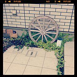 玄関/入り口/車輪/アイビーのインテリア実例 - 2013-09-30 23:54:35