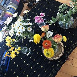 観葉植物/流木/花のある暮らし/お花のある生活❁/いいね、フォロー本当に感謝です♡...などのインテリア実例 - 2019-04-03 09:10:28