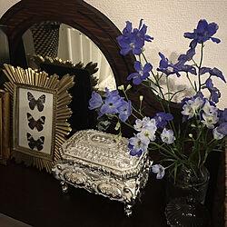 花のある暮らし/キャンドル/アンティーク/猫と暮らすマンション/昆虫...などのインテリア実例 - 2020-04-08 23:49:53