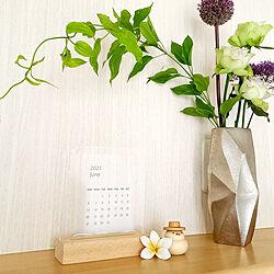 棚/鳥さん/透明カレンダー/花のある暮らしのインテリア実例 - 2021-06-06 17:14:01