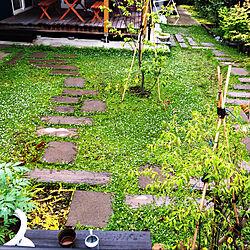 自作ガーデン/小道のある庭/クラピアK7/グランドカバープランツ/ウッドデッキのある暮らし...などのインテリア実例 - 2021-06-29 16:23:49