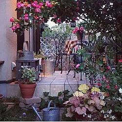玄関/入り口/撮り溜め写真/裏庭/庭のある暮らし/庭...などのインテリア実例 - 2020-05-23 16:45:09