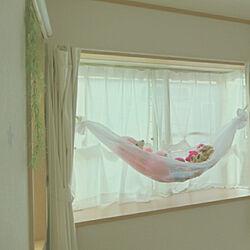 ベッド周り/寝室/子供部屋/出窓/出窓ディスプレイ...などのインテリア実例 - 2019-09-21 06:52:54