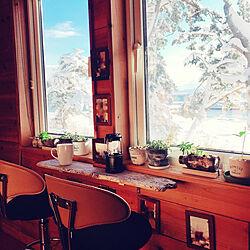 おうち時間/DIY/空の眺め/窓辺のディスプレイ/流木棚...などのインテリア実例 - 2021-01-03 15:04:22
