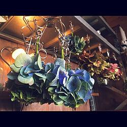 marusan流/大正浪漫に憧れる/ご訪問ありがとうございます♡/紫陽花/ヴィンテージ雑貨...などのインテリア実例 - 2021-06-30 09:48:51