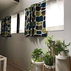 IKEA/カーテン変えました/カーテン/二階リビング/犬のいる暮らし...などのインテリア実例 - 2020-07-01 15:48:13
