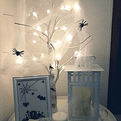 棚/IKEAランタン/蜘蛛/蜘蛛の巣/白樺ツリー...などのインテリア実例 - 2018-09-11 21:28:14