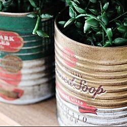 セリア/フェイク多肉/古い木枠/缶詰ブリキポット/錆び加工...などのインテリア実例 - 2013-11-20 18:35:24