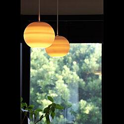 ペンダントライト/信楽透器/わが家の明かり/植物のある暮らし/壁/天井のインテリア実例 - 2021-08-03 21:00:20