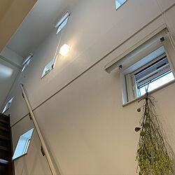 壁/天井/スワッグ/ゼロキューブ 回/中庭のある家/小窓のインテリア実例 - 2019-01-21 16:55:21