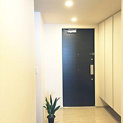 玄関/入り口/玄関収納/玄関/分譲マンションのインテリア実例 - 2016-04-30 00:21:41