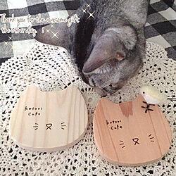 ベッド周り/毛むくじゃらのゆきさん/猫と暮らす/猫のコースター/素敵な素敵便♡...などのインテリア実例 - 2018-11-10 16:02:09