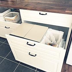 キッチン/IKEA/ダストボックス/ゴミ箱/IKEAキッチン...などのインテリア実例 - 2017-09-15 20:13:44