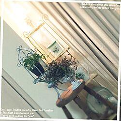 リビング/イマン/フレンチシック/ナチュラルフレンチ/ペイント...などのインテリア実例 - 2015-07-10 20:19:21