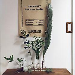 机/花瓶/バスロールサイン/エアプランツ/ヒペリカムココウノ...などのインテリア実例 - 2017-05-30 17:44:03